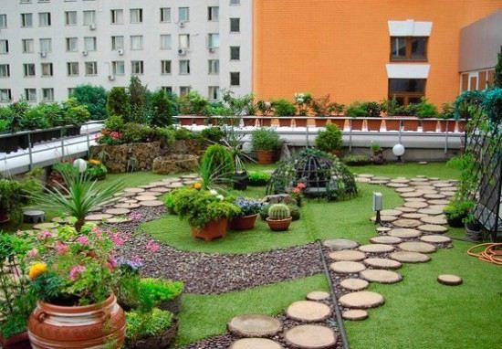 озеленение крыш зданий от iplants.by