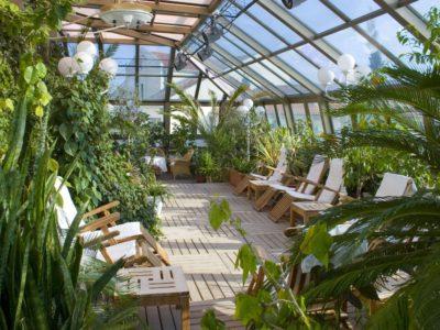 Создание зимних садов в Краснодаре