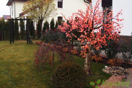 Оформление ландшафтного дизайна загородного дома