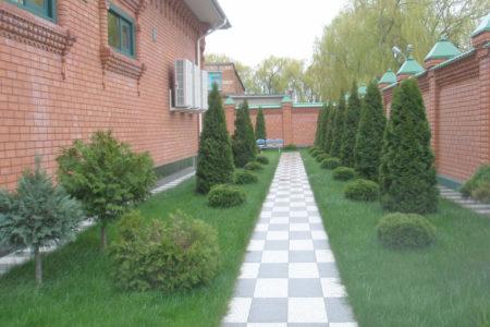 Озеленение в Краснодаре