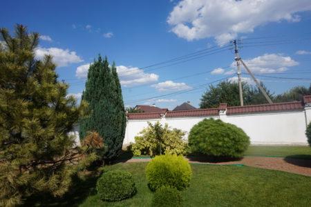 Озеленение участка в Краснодаре