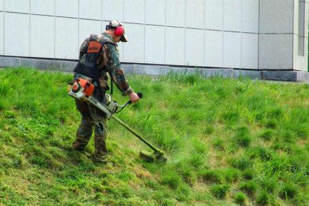 Стрижка газона в Краснодаре