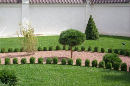 Укладка газона в Краснодаре